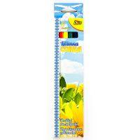 Набор цветных карандашей «Цветок солнца» Olli, 6 шт