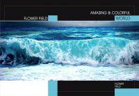"""Зошит А4. Серія """"Природа"""". Морська хвиля (клітинка)"""